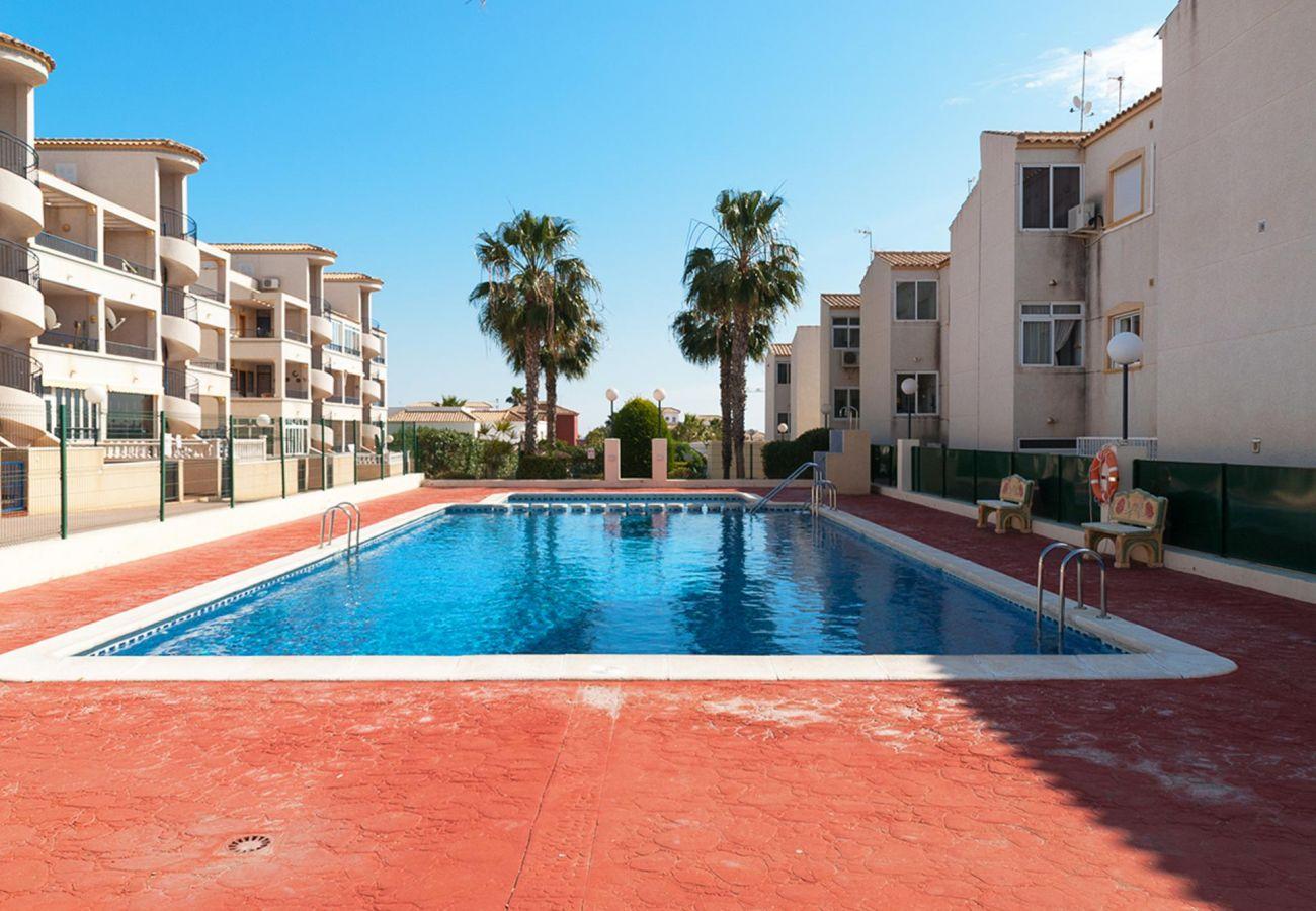 Zapholiday - 3001 - Appartement Orihuela Costa, Costa Blanca - zwembad