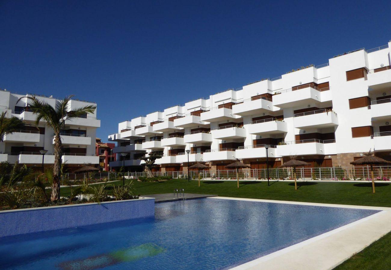 Zapholiday - 3029 - Orihuela Costa penthouse, Costa Blanca - zwembad
